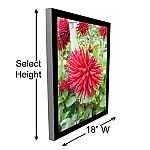 """18"""" W Single Sided Graphic Light Boxes"""